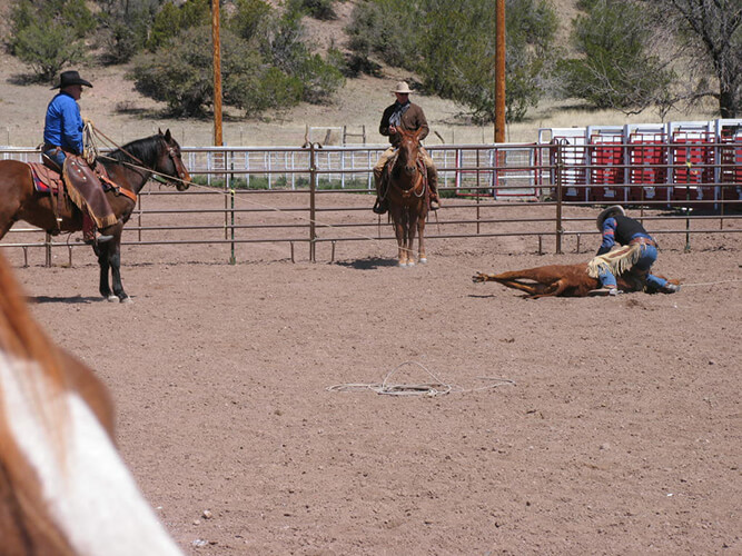 Ranch Roping Competition