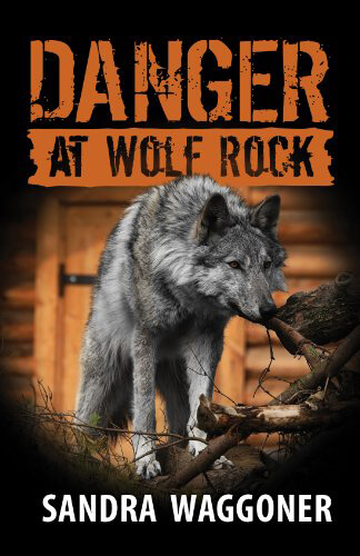 Danger at Wolf Rock cover